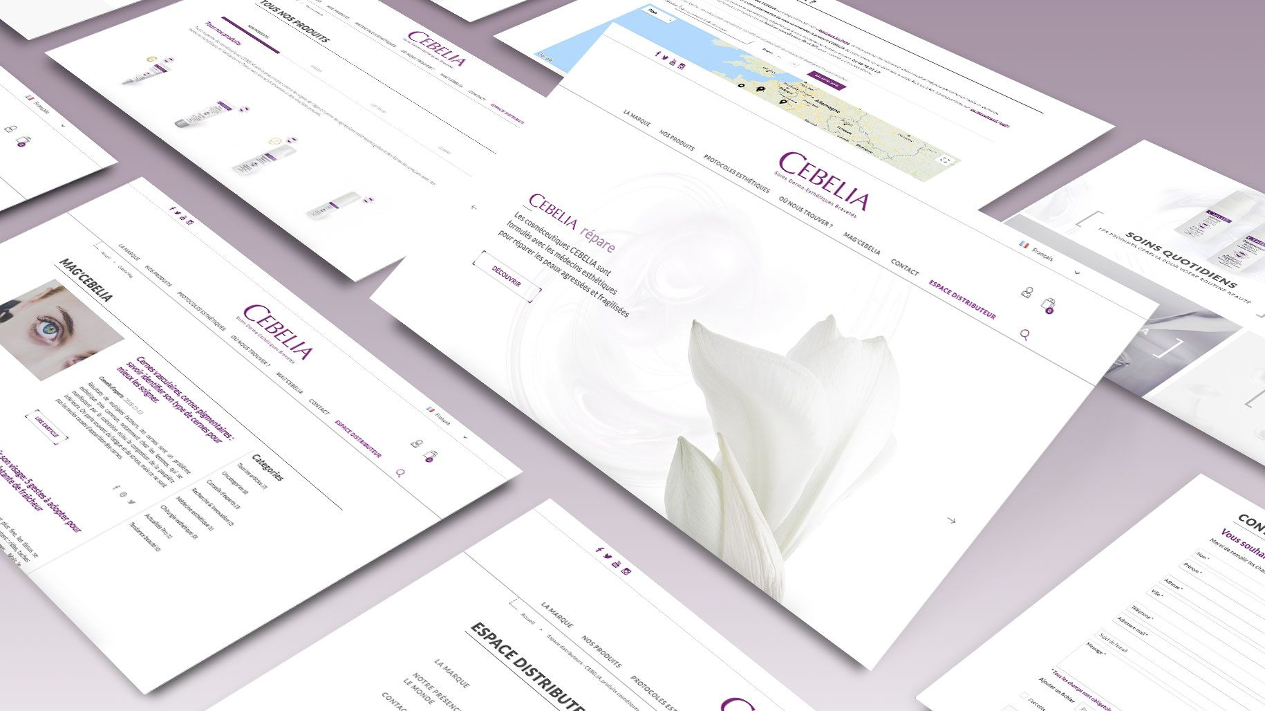 CEBELIA : Refonte du site internet e-commerce par Antipodes Medical